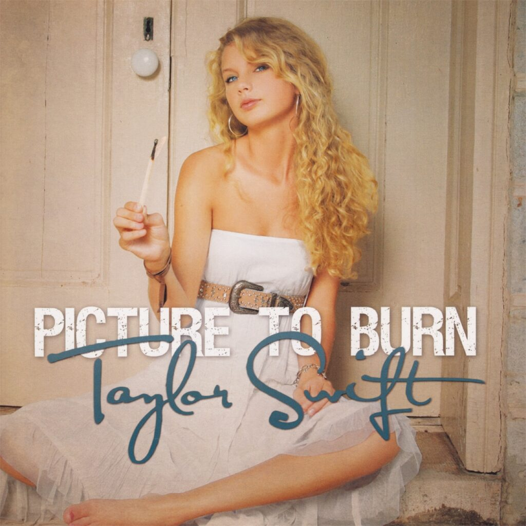 Picture to Burn by Taylor Swift (Taylor Swift)